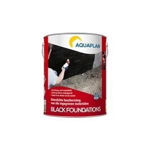 Black-Foundations