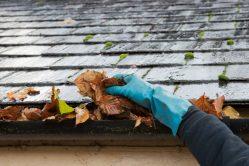 Zo voorkom je bladeren in je dakgoot