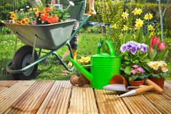 Met deze 3 tips is je tuin snel klaar voor de lente